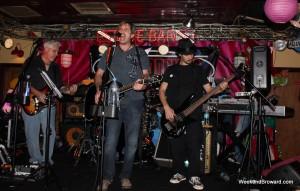 The Goodnicks band