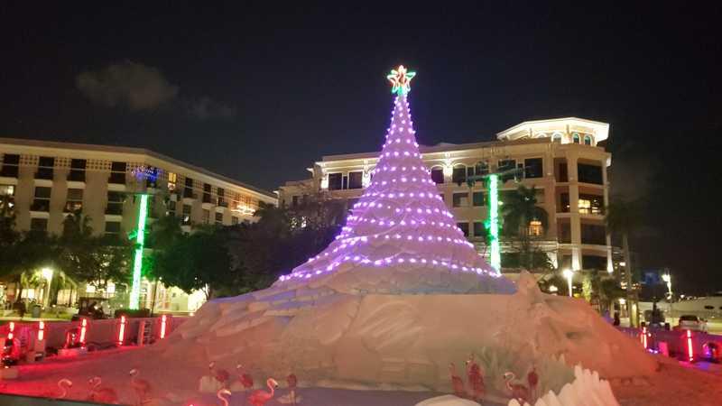 Sandi Christmas Tree West Palm